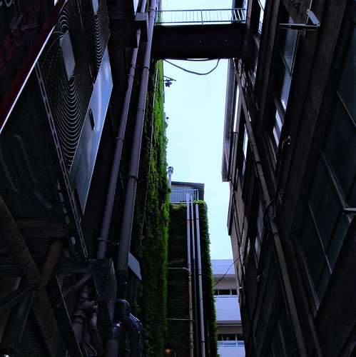 Extending passage that exists high in Roppongi