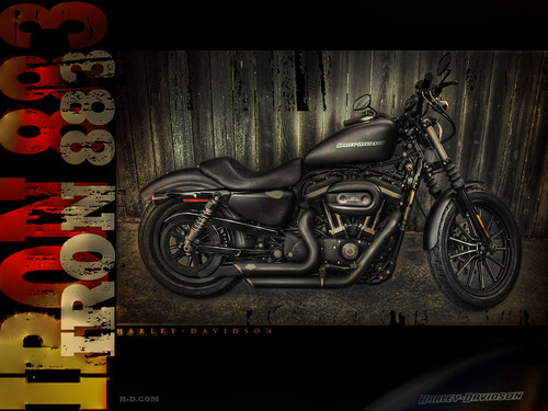 Harley Davidson 883 Iron Wallpaper. IRON 883 WALLPAPER HDR