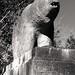 Douglas Bridge Bear