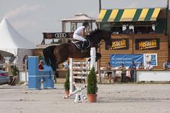 _MG_7958 (patrice_gabin) Tags: cheval jumping international juillet 2009 obstacle saut cheveaux sandillon