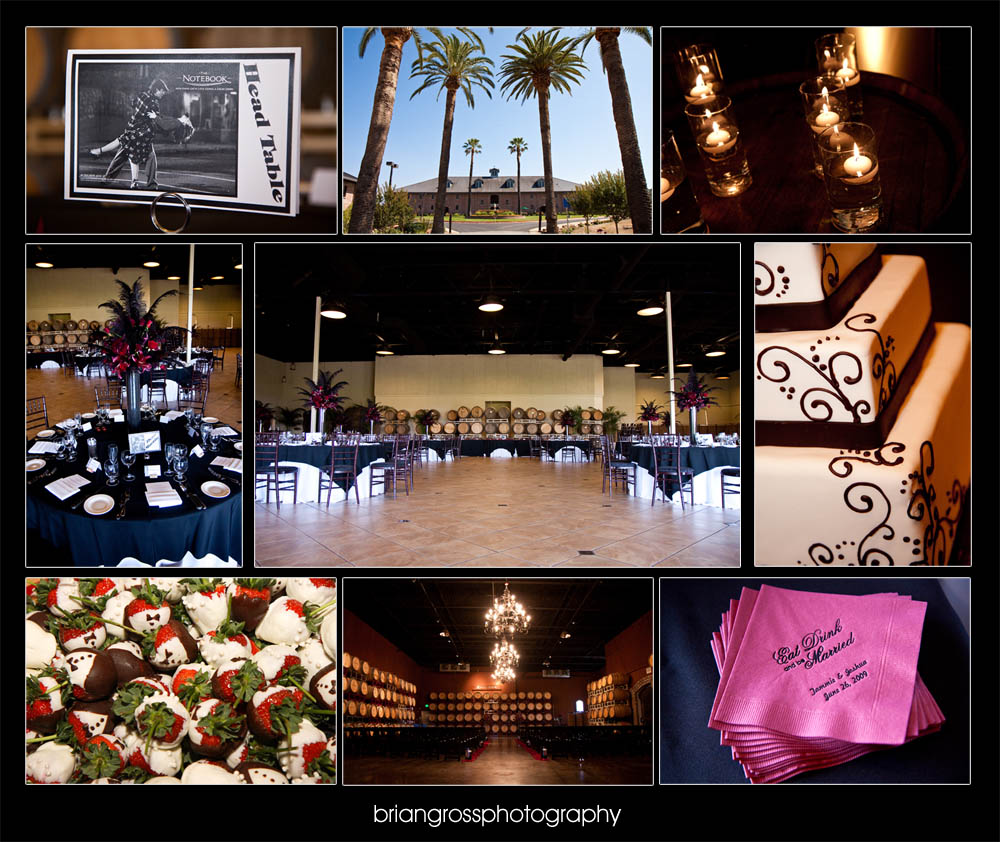 briangrossphotography Brian Gross 2009 Wedding_photography Palm_event_center Pleasanton_CA (17)