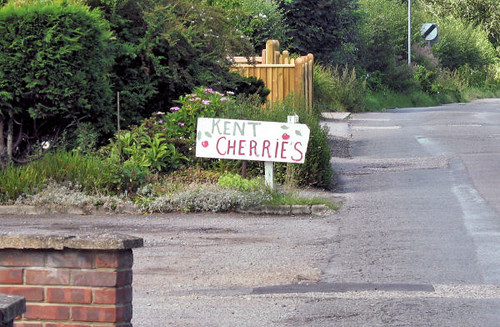 kent cherry sign 4347 R