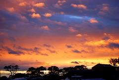 Brampton Festival sky at dusk
