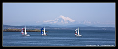 Sailing by the mountain (discopalace) Tags: ocean travel blue mountain canada water sailboat boat bc britishcolumbia victoria telephoto tistheseason canoneos5d canonef70200mmf4lusm lpfloating