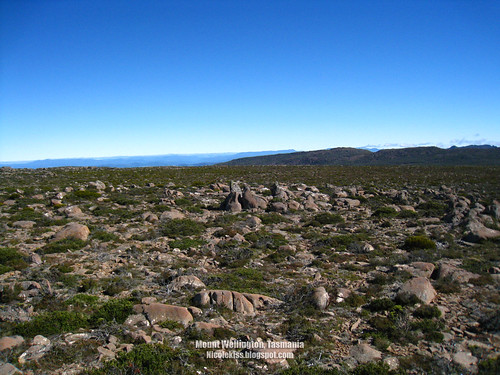 mount wellington wallpaper_1600x1200