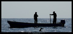 got away without it (a) (<rs> snaps) Tags: sea fish fishing fishermen iran rowboat arabian tuna oman strait notphotoshopped hormuz blackwhitephotos maguru reneschlegel