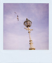One Lamp Two Gulls (Pictures from the Ghost Garden) Tags: sky color colour birds polaroid gulls instant herefordshire lamps expired hereford instantfilm 600film polaroid600film polaroidfilm 600cl polaroid600cl