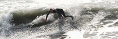 Surfing at Cayucos Pier (Meadows Interactive) Tags: beach surfing cayucos cayucospier