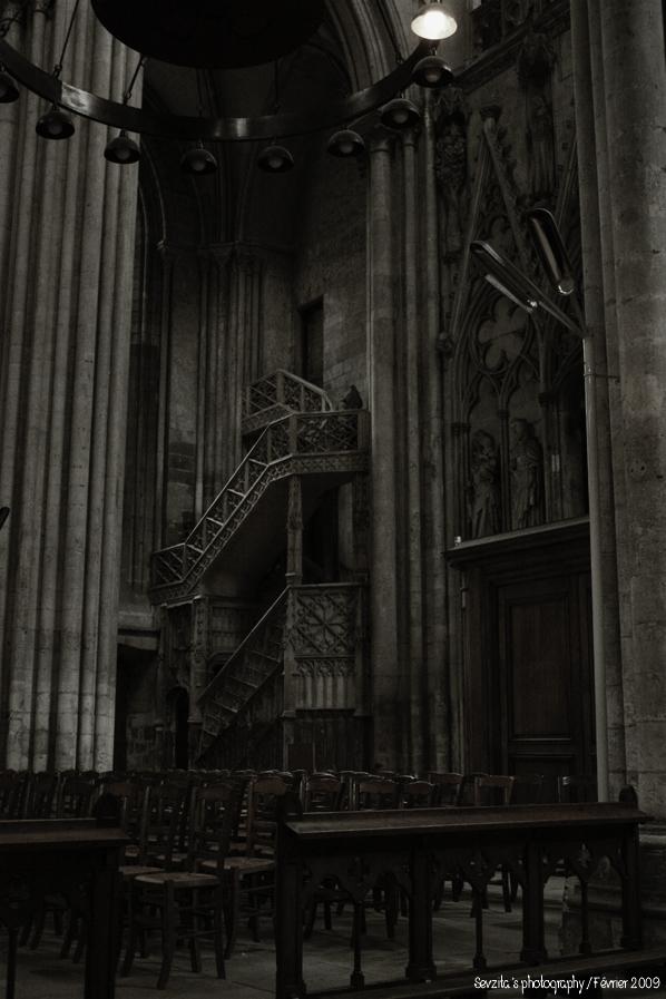 Notre Dame #12