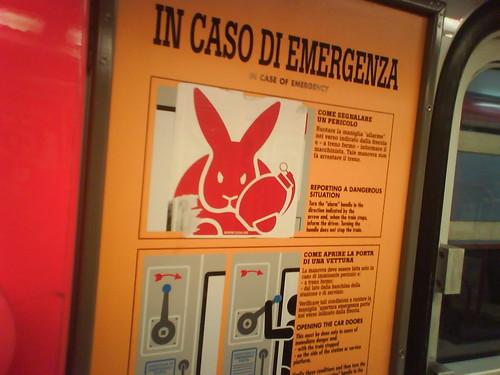 In caso di emergenza far esplodere il coniglio