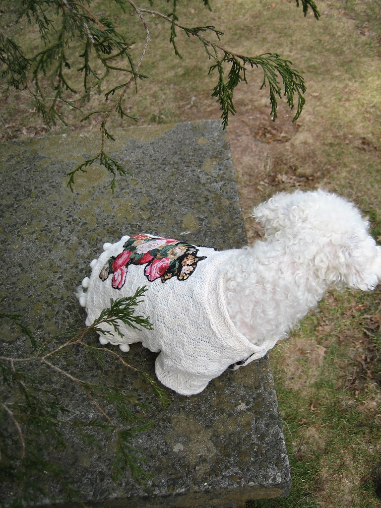 Everything's Coming up Roses Dog Sweater -www.froufroufido.etsy.com