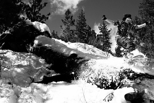 TAHOE_LOG_LA_43_BW