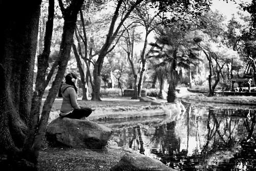 Meditando / Meditating