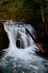 Smooth! (.aditya.) Tags: wood water oregon portland flow moss log rocks stream falls waterfalls handheld flowing columbiagorge longshutter multnomahfalls