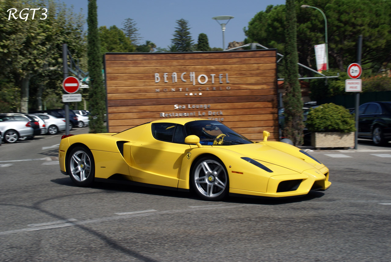 Ferrari Enzo. go back