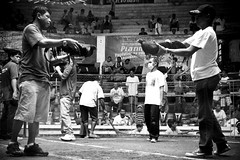 COCKFIGHT (132) (Peter_O'Driscoll) Tags: gambling game spur fight fighter attack culture cockpit clash peter coliseum rooster tradition breed combat gamble betting bet cultural gladiator manok gamecock gambler gallera sabong wager bloodsport cockfighting odriscoll stamina warrier panay gamefowl hahnenkampf cityoflove iloilocity combatdecoqs rinhadegalo bulang  colseum sagupaan g combattimentodigalli bulangan pasampok   riadegallos   sabonero manoktukaan peterodriscoll
