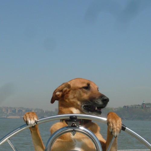 Yachting #1