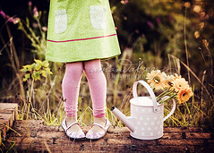 Green and Pink ({amanda}) Tags: flowers autumn cute ouch outside kid shoes stripes overcast naturallight tights gerbera wateringcan sixyears amandakeeysphotography