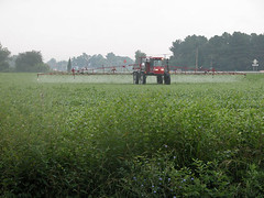 a working farm near Trappe, MD (by: Integration and Application Network)