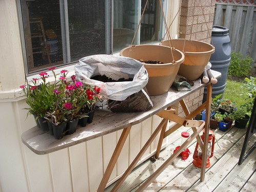 Makeshift potting bench.