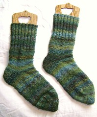 nature walk socks 007