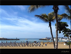 Beach - Puerto Rico