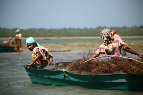 Mjini Kiuyu women pulling boat
