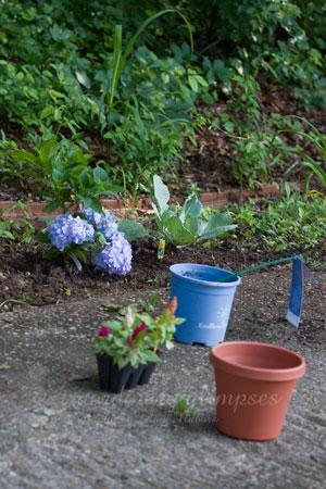 gardening_Jun162009_0001