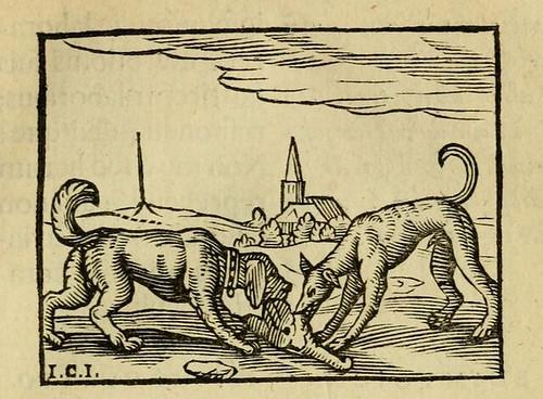 Canes Duo, Domesticus et Venaticus
