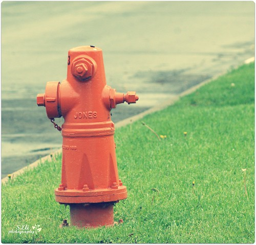 [orange] Fire hydrant