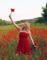[フリー画像] 人物, 女性, 花畑, ヒナゲシ, 人と花, 金髪・ブロンド, ハンガリー人, 201106011700