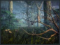 """Misty Morning Blues"" (outragousart2008) Tags: art digital landscape 3d digitalart surreal digitalpainting fantasy computerart bryce digitallandscape outragousart graphicmaster"