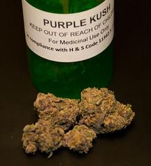 Purple Kush (MyBuds) Tags: flower macro purple medical og pot bud marijuana 215 kush nug purp