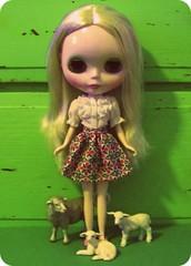 Green + Henrietta + Sheep