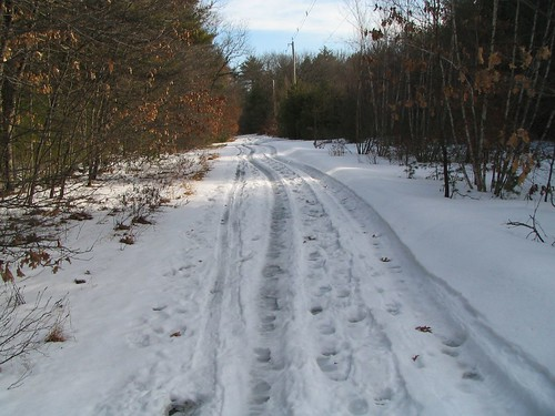The Trail Ahead