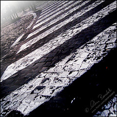 crosswalk curvature () Tags: street people italy stpeters rome roma andy fog strada italia gente legs andrea andrew pedestrians crosswalk nebbia sanpietro gambe pedoni benedetti attraversamentopedonale