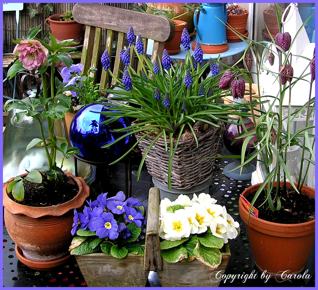 Spring on the black iron patio table