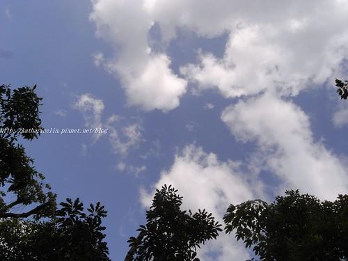 你拍攝的 3藍天。