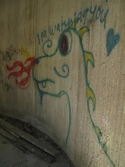 I'm Watching You (bjornery) Tags: minnesota bike bicycle century graffiti ride metro graf suburbs twincities exurbs 100miles umorepark gopherordnanceworks 100miler