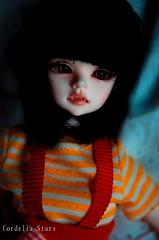 Orange and Red (Cordelia Stars) Tags: red brown black beauty dark hair ginger eyes doll tanya vampire mark bob style ears spot lips clip elf wig bjd fangs dim mole msd faceup dimdoll yuiinc benetia