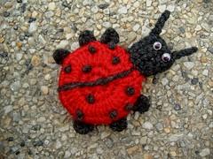 magnetic ladybug