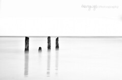 | l | | (Gary Ngo | Photography) Tags: california longexposure bw seascape monochrome nikon minimal filter lee nd 1750 highkey tamron fortfunston f28 thorntonstatebeach d7000 bigstopper