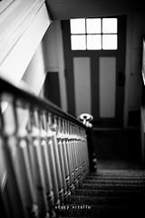 right light [Explore] (stacyvitallo) Tags: door window stairs canon 50mm blackwhite dof availablelight f14 staircase banister railing hss 30day 5dmarkii 5dmii stacyvitallo slidersunday