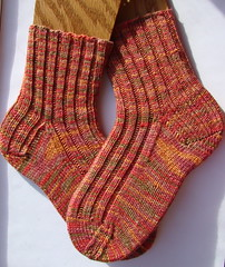Free pattern for Evolution Ribbed Socks