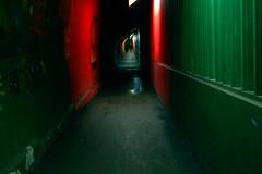 58/365 - The Tunnel (Johanna Bocher) Tags: light red people green wet dark way walking nikon path painted tunnel eerie walls 365 february augsburg thetunnel johnmurphy d40 project365 bahnhofstunnel tumblrd bahnhofsunterfhrung kunsttunnel 365x2009 27022009 kohlenrutsche angstrhre pferseerunterfhrung