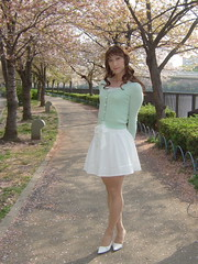 day109-103 cherry blossoms (Yumiko Misaki) Tags: white green cherry blossoms knit skirt osaka lime day109