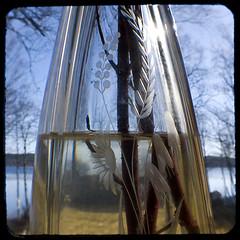 Waterline doubled up (Aniara Trast) Tags: sky lake sweden stems vase twigs duaflex insidelookingout ttv
