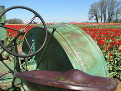 Tractor and Tulips (Sadra Photos) Tags: flowers tractor oregon festivals tulip farms annual 2009 woodenshoe johndeere
