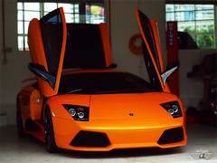 Hands Up! (anType) Tags: orange sports car open wing competition front exotic malaysia lp kualalumpur raya frontal lamborghini supercar edo sportscar spoiler murcilago murcielago v12 lambo 640 murci lp640 scissordoors iktikadraya iktikad