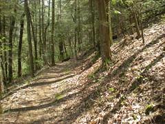 16 - Jarrard Gap Trail